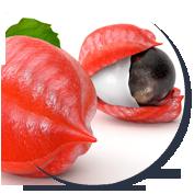 toksyny-oczyszczanie-guarana-bezale-nicorix