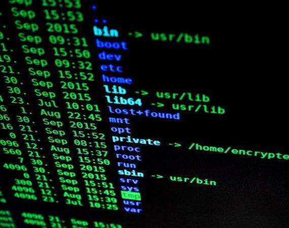 covid 19, hakerzy, cyberoszustwa